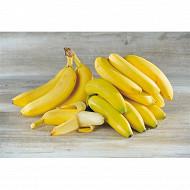 Banane Cavendish