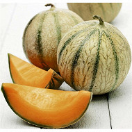 Melon charentais jaune