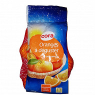 Orange à déguster Cora