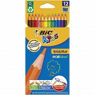 Bic kids évolution étui carton suspendu x 12 couleurs assorties
