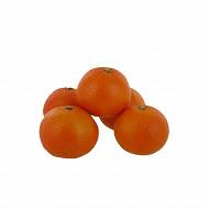 Clementine bio nules le kilo