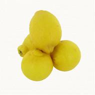 Citron bio Primofiori