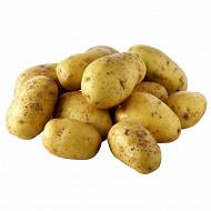 Pomme de terre de consommation blanche 10kg