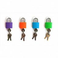 2 cadenas à clé assorti