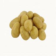 Pomme de terre chair ferme blanche le kilo
