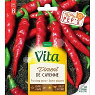 Vita Vilmorin piment de cayenne