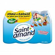 Saint Amand eau minérale naturelle 12X0.33L Bouchon Sport