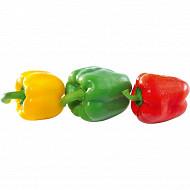 Poivrons tricolore 500g