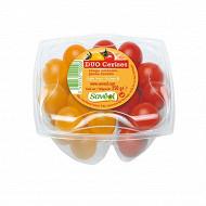 Tomate cerise ronde duo barquette 250g