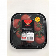 Cora dégustation tomate grappe barquette 500g