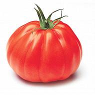 Tomate cotelée aumonière