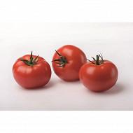 Tomate ronde vrac