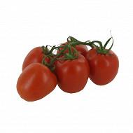 Tomate allongée grappe