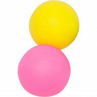 Filet 2 balles de beach ball