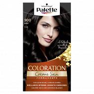 Palette Coloration noir n 900