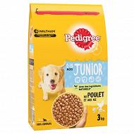 Pedigree croquettes pour chien junior au poulet et au riz sac 3kg