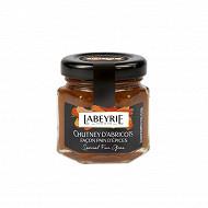 Labeyrie Chutney d'abricot façon pain d'épice pour foie gras 50g