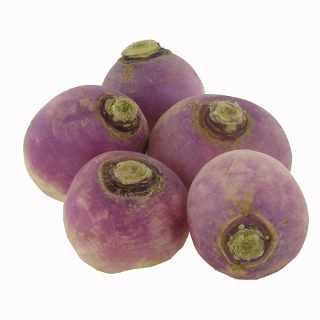 Navet violet bio le kilo