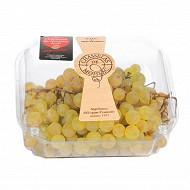 Cora degustation raisin chasselas de moissac aop barquette 750g