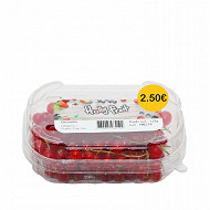Groseille rouge barquette 125g