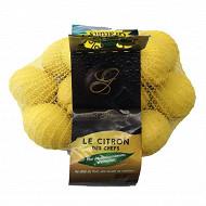 Citron jaune 1kg