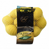 Citron girsac Espagne 1kg