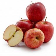 Pomme royal gala plateau 2 kg