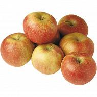 Pomme bicolore le sachet de 2kg