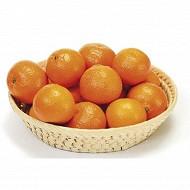 Mandarine Clémenvilla