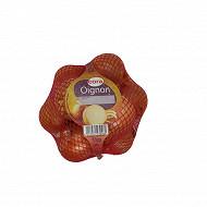 Cora oignon jaune 1kg