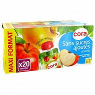 Cora gourdes purée de pomme sans sucres ajoutés 20x90g