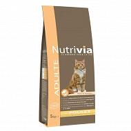 Nutrivia chat adulte viande 5kg