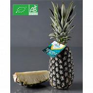 Ananas bio pain de sucre