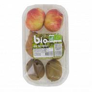 Fruits assortis bio 600g