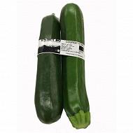 Courgette longue verte bio 500g