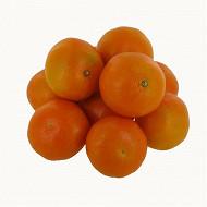 Mandarine clemenvilla bio 1kg