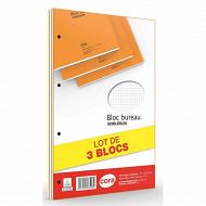 Cora lot de 3 blocs 21x31.5 cm 160 pages 80 g 5/5