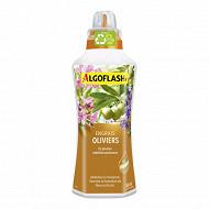 Algoflash engrais oliviers plantes méditerranéennes 750  ml