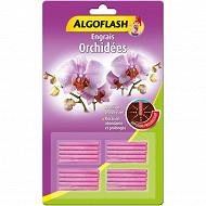 Algofalsh engrais 20 bâtonnets Orchidées