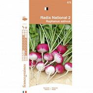 France graines radis national