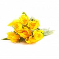 7 Tulipes unicolores coloris assortis