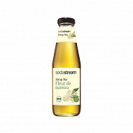 Sodastream sirop bio fleur de sureau 500ml 30011349
