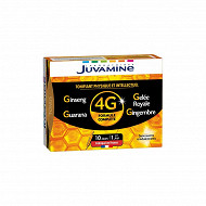 Juvamine phyto ginseng gelée royale guarana gingembre tonifiant global 150g