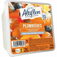 Crème glacéé plombière 450 g