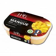 HDG sorbet mangue 750ml - 488g