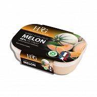 HDG sorbet melon 750ml - 487.5g