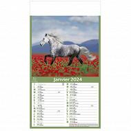 Exacompta calendrier mensuel perforé 18.5x35 cm 12 feuillets chevaux