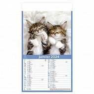 Exacompta calendrier mensuel perforé 18.5x35 cm 12 feuillets chats