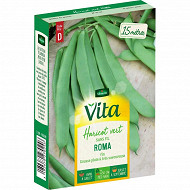 Vita Vilmorin haricot roma plat