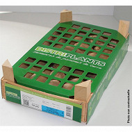 Bulbes pomme de terre B.fontenay 25/32 clayette 100 plants